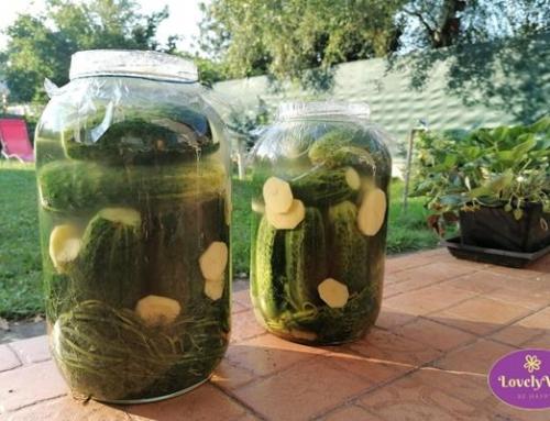 Gluténmentes kovászos uborka lépésről lépésre