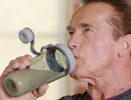 Tényleg húsmentes étrendre váltott Schwarzenegger is?