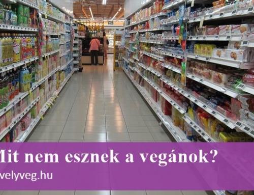 Mit nem esznek a vegánok? – Hasznos tippek