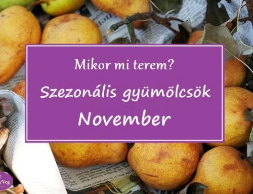 Mikor mi terem? – Szezonális gyümölcsök: November