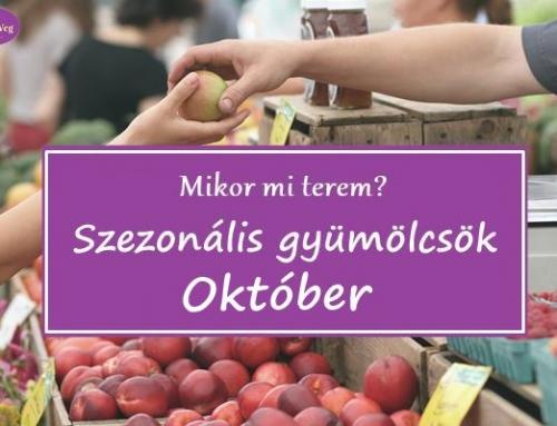Mikor mi terem? – Szezonális gyümölcsök: Október