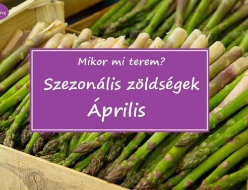 Mikor mi terem? – Szezonális zöldségek: Április