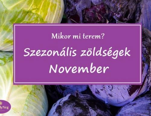 Mikor mi terem? – Szezonális zöldségek: November